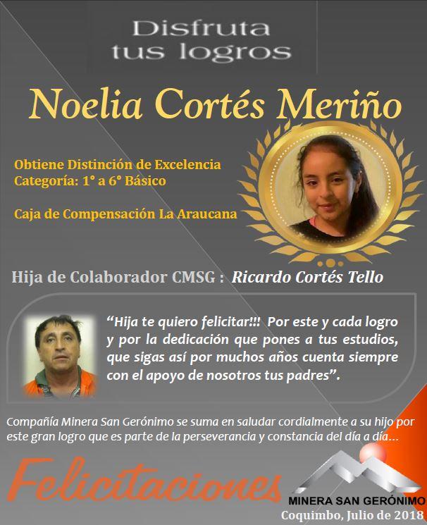 NOELIA CORTES MERIÑO