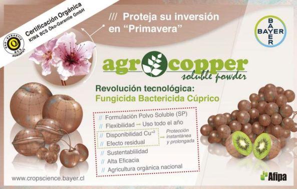 1. SINTESIS AGROCOOPER