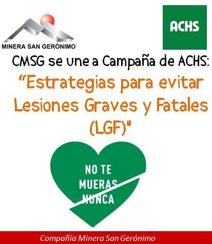lgf_cmsg